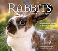 Rabbits Gentle Hearts Valiant Spirits