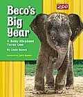 Becos Big Year A Baby Elephant Turns One