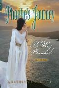 Phoebe's Journey: Part 3: The Way Forward
