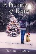 A Promise of Home: A Hometown Harbor Novel