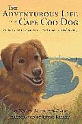 The Adventurous Life of a Cape Cod Dog: A Curious Canine's Exploration of the Cape's Natural History