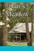 Barr's Meadow: Julian's Private Scrapbook Book 1