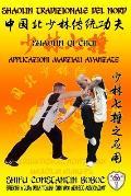 Shaolin Tradizionale del Nord Vol.17: Shaolin Qi Chui - Applicazioni Marziali Avanzate