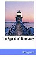 The Synod of New York