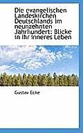 Die Evangelischen Landeskirchen Deutschlands Im Neunzehnten Jahrhundert: Blicke in Ihr Inneres Leben
