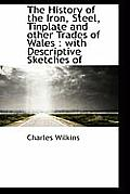The History of the Iron, Steel, Tinplate and Other Trades of Wales: With Descriptive Sketches of