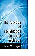 The Function of Socialization in Social Evolution