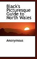 Black's Picturesque Guide to North Wales