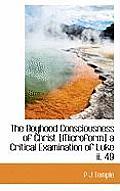 The Boyhood Consciousness of Christ [Microform] a Critical Examination of Luke II. 49