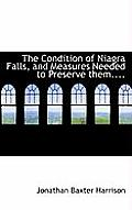 The Condition of Niagra Falls, and Measures Needed to Preserve Them....