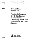 Influenza Pandemic: Further Efforts Are Needed to Ensure Clearer Federal Leadership Roles and an Effective National Strategy