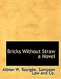 Bricks Without Straw a Novel