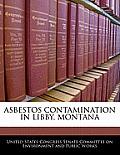 Asbestos Contamination in Libby, Montana