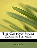 The Cottony Maple Scale in Illinois