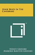 Hoof Beats in the Canebrake