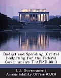 Budget and Spending: Capital Budgeting for the Federal Government: T-Afmd-88-3