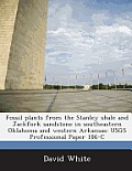 Fossil Plants from the Stanley Shale and Jackfork Sandstone in Southeastern Oklahoma and Western Arkansas: Usgs Professional Paper 186-C