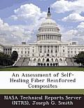 An Assessment of Self-Healing Fiber Reinforced Composites