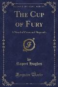 The Cup of Fury: A Novel of Cities and Shipyards (Classic Reprint)
