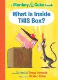 What Is Inside THIS Box Monkey & Cake 1