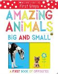 Amazing Animals Big and Small: Scholastic Early Learners (My First)