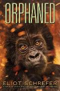 Orphaned (Ape Quartet #4), Volume 4