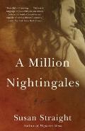Million Nightingales