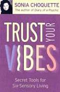 Trust Your Vibes Secret Tools for Six Sensory Living