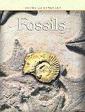 Fossils Rocks & Minerals