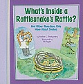 Whats Inside a Rattlesnakes Rattle & Other Questions Kids Have about Snakes