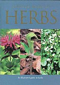 Pocket Guide to Herbs