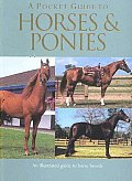 Pocket Guide To Horses & Ponies