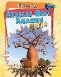 Africa's Most Amazing Plants