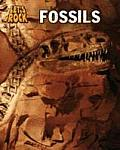 Fossils. Louise Spilsbury