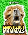 Marvellous Mammals