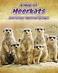 A Mob of Meerkats
