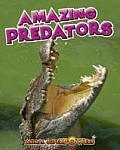 Amazing Predators