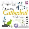 Bee in a Cathedral: and 99 Other Scientific Analogies
