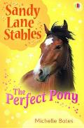 Perfect Pony