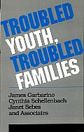 Troubled Youth, Troubled Families: Understanding Families at Risk for Adolescent Maltreatment