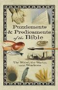 Puzzlements & Predicaments of the Bible: The Weird, the Wacky, and the Wondrous