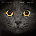 Life & Love of Cats
