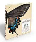 Butterflies of North America Titian Peales Lost Manuscript