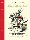 Classic Coloring Alice in Wonderland Coloring Book 55 Removable Coloring Plates