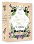 Antique Anatomy Tarot Kit Deck & Guidebook for the Modern Reader