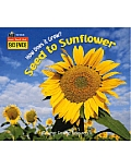 Listen Read Think Science How Does It Grow Seed to Sunflower