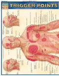 Trigger Points Laminated Reference
