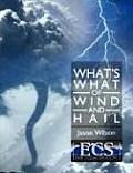 What's What of Wind and Hail