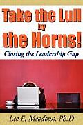 Take the Lull by the Horns!: Closing the Leadership Gap