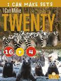 I Can Make Twenty